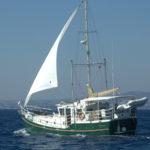 Backup Sailing Rig